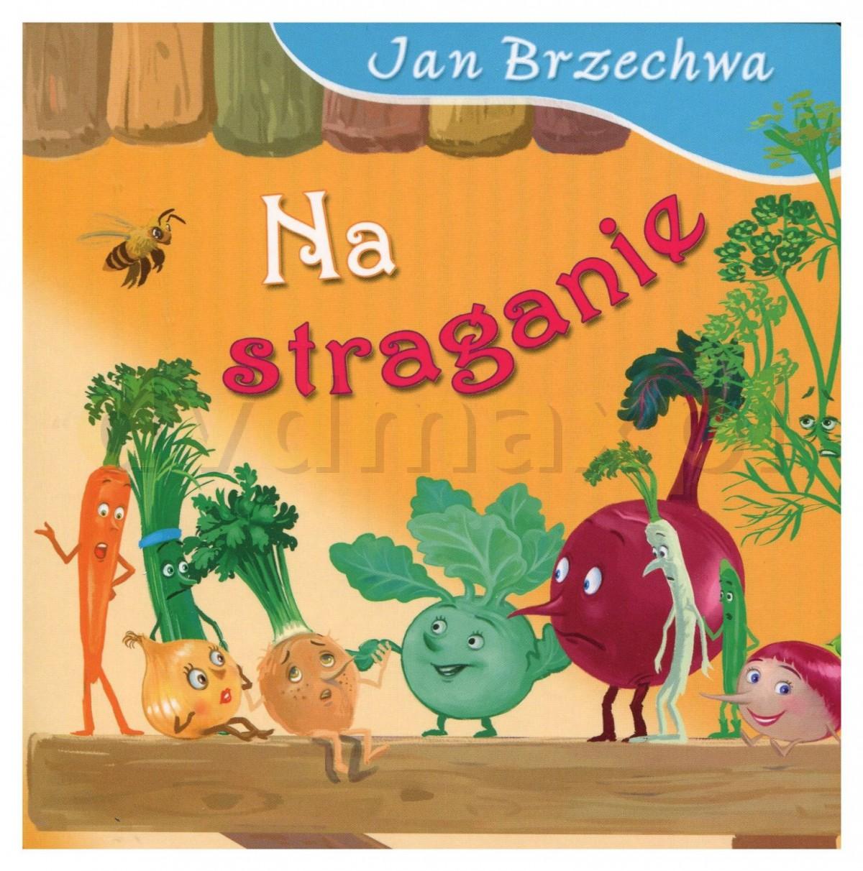 Sklep Punkt44pl Na Straganie Jan Brzechwa Książka